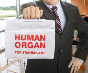 Organ Transport Tote Lunchbox