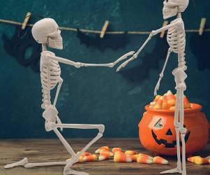 Posable Halloween Skeletons