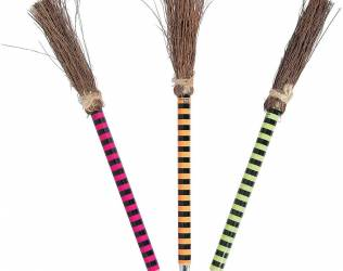 Witch Broom Pens